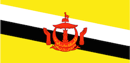 flag_m_Brunei