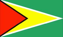 flag_m_Guyana