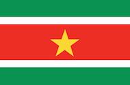 flag_m_Suriname